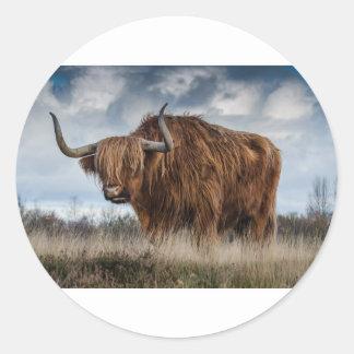 Sticker Rond Yaks de Brown sur le vert et le champ d'herbe de