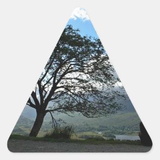 Sticker Triangulaire 232323232  fp537 ;