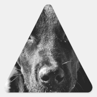 Sticker Triangulaire Animal familier canin de chien