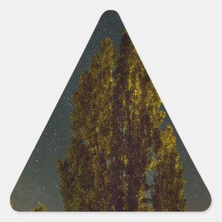 Sticker Triangulaire Arbres sous la manière laiteuse une nuit étoilée