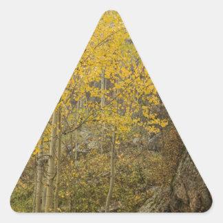 Sticker Triangulaire Beauté et la bête