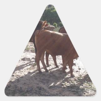 Sticker Triangulaire Bétail 1