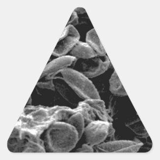 Sticker Triangulaire capture aplatie de cellules