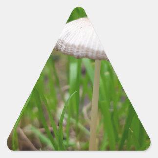 Sticker Triangulaire champignon de bébé