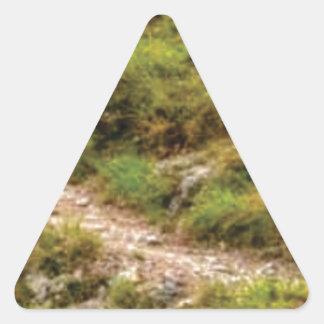 Sticker Triangulaire chemin herbeux