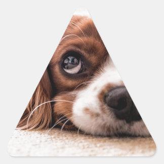 Sticker Triangulaire Chien canin triste