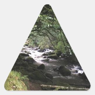 Sticker Triangulaire Courant irlandais