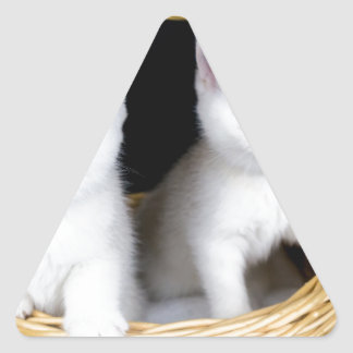 Sticker Triangulaire Deux chatons blancs dans le panier sur
