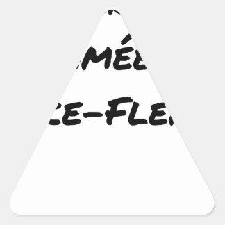 Sticker Triangulaire ÉNERGIE CRAMÉE AU LANCE-FLEMME - Jeux de mots