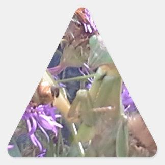 Sticker Triangulaire Exploration de scarabées de Milkweed en masse