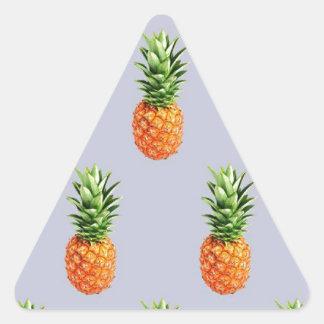 Sticker Triangulaire Express d'ananas