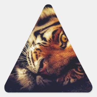 Sticker Triangulaire Faune animale de tigre reposant le macro plan