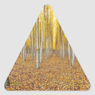Sticker Triangulaire Ferme d'arbre de peuplier dans Boardman Orégon
