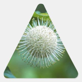 Sticker Triangulaire Fleur sauvage de Bush de bouton de l'Alabama