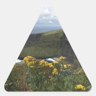 Sticker Triangulaire Fleurs sur les falaises de Moher