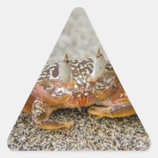 Sticker Triangulaire Griffes de crabe
