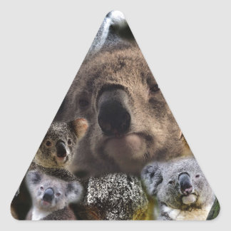 Sticker Triangulaire Koala heureux