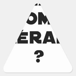 Sticker Triangulaire La Roma Thérapie - Jeux de Mots - Francois Ville