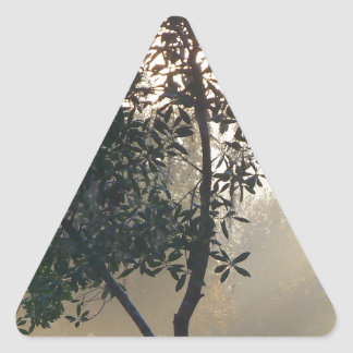 Sticker Triangulaire lever de soleil brumeux de matin