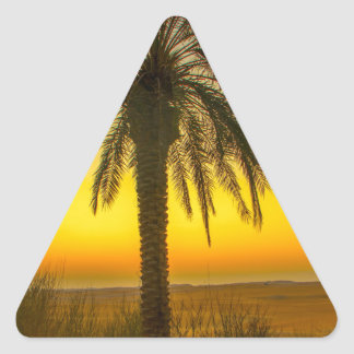 Sticker Triangulaire Lever de soleil de palmier