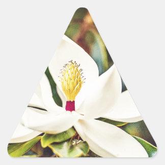Sticker Triangulaire Magnolia magnifique du Mississippi