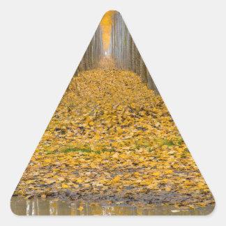 Sticker Triangulaire _MG_3099aReflection à la ferme d'arbre de peuplier