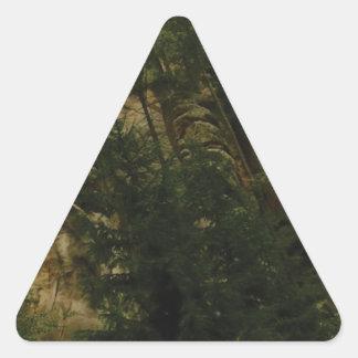 Sticker Triangulaire morceaux et bosses de roche