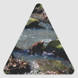 Sticker Triangulaire mousse dans The Creek
