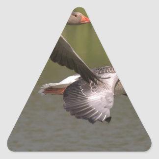 Sticker Triangulaire Oies canadiennes