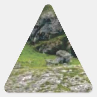 Sticker Triangulaire pierre verte de merveille