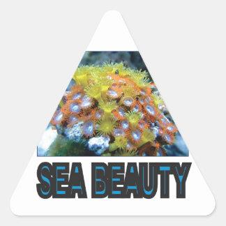 Sticker Triangulaire pile de beauté de mer