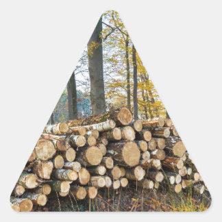 Sticker Triangulaire Pile des troncs d'arbre dans la chute forest.JPG