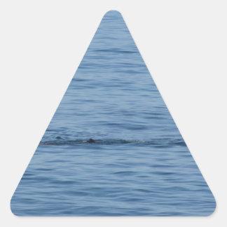 Sticker Triangulaire Plongeur de mer dans le bain de costume de