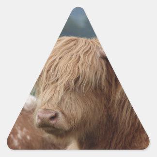Sticker Triangulaire portrait des bétail des montagnes