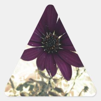 Sticker Triangulaire pourpre africain de marguerite