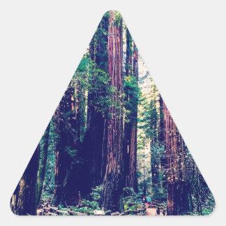 Sticker Triangulaire Séquoias de Californie