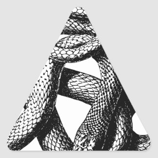 Sticker Triangulaire Serpent tordu