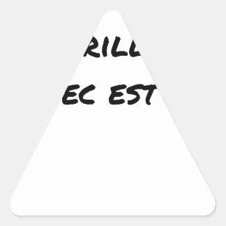 Sticker Triangulaire Si la Réussite est brillante, l'échec est mate