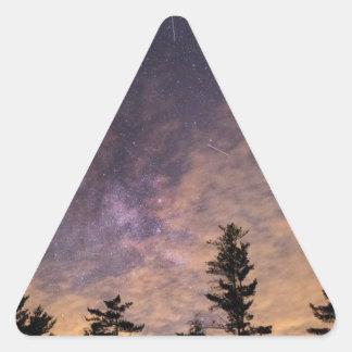 Sticker Triangulaire Silhouette des arbres la nuit