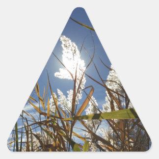 Sticker Triangulaire Thème de lumière du soleil d'éblouissement