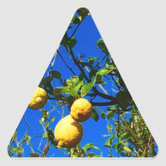 Sticker Triangulaire Trois citrons siciliens