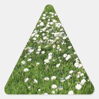 Sticker Triangulaire Un air de printemps