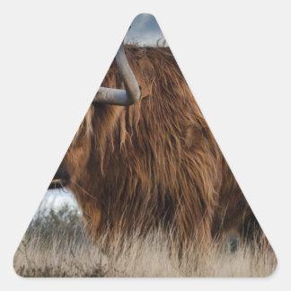 Sticker Triangulaire Yaks de Brown sur le vert et le champ d'herbe de