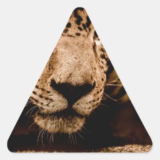 Sticker Triangulaire yeux de égrappage de l'eau de jaguar