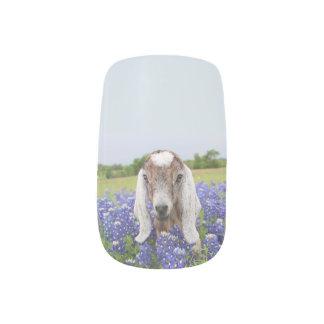 Stickers Pour Ongles Enveloppes de clou de chèvre de bébé