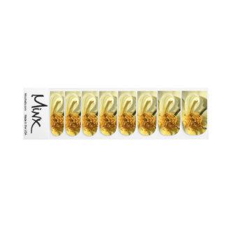 Stickers Pour Ongles Fermez-vous vers le haut de la fleur blanche