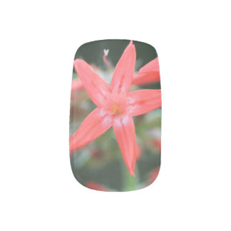 Stickers Pour Ongles Fermez-vous vers le haut du fleur sauvage assez