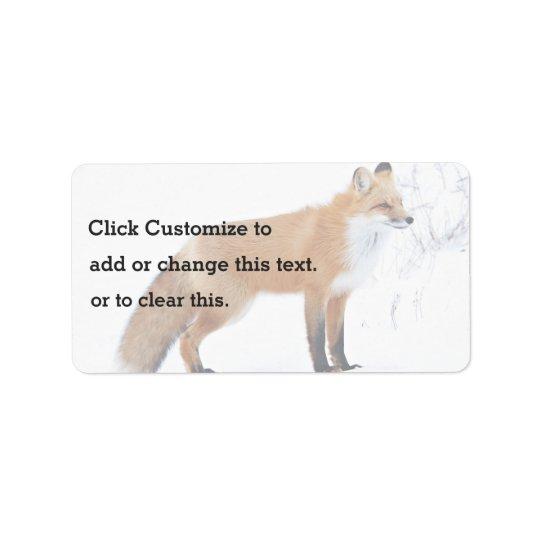 Strabisme du Fox se tenant dans la neige Étiquette D'adresse