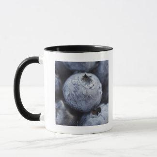Studio tiré des myrtilles 2 mug