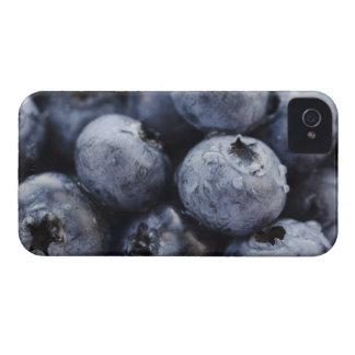 Studio tiré des myrtilles 3 coques iPhone 4 Case-Mate